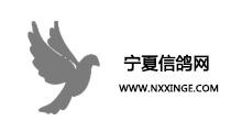 亚博app官网信鸽网